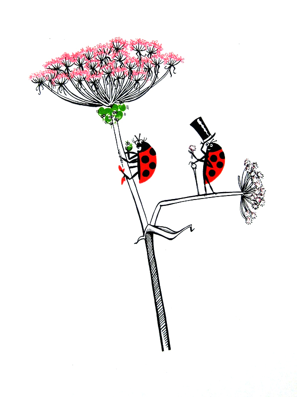 animalarium ladybugs