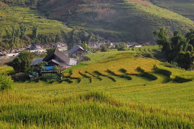 Culture and Trekking in Sapa