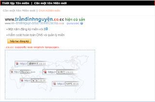 Tên miền Tiếng Việt trên Co.Cc