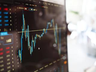 expert finance opinion