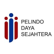 Logo PT Pelindo Daya Sejahtera