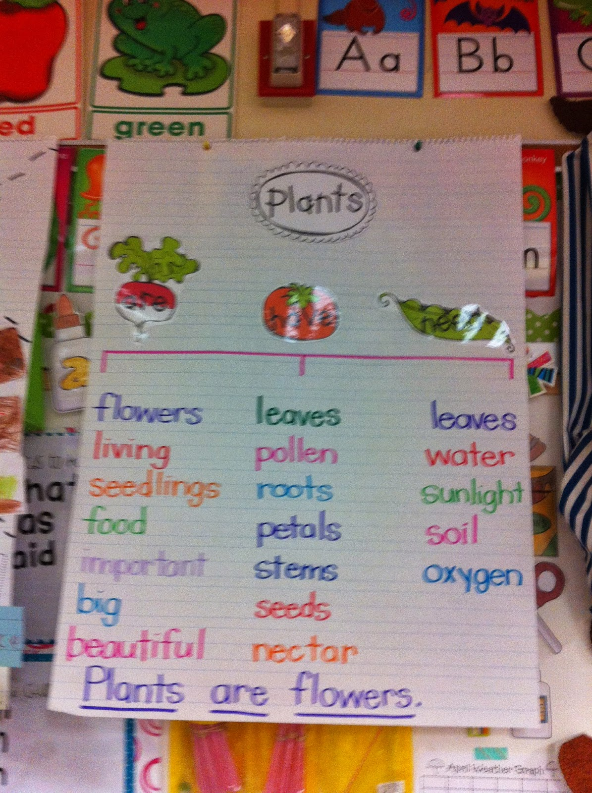 Welcome To Room 36 Flowers And Plants