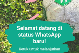 Cara Buat Status Foto dan Video di WhatsApp Messenger