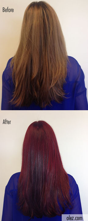 Olez Haircare Blog: Fall Hair Makeover: Tips for ...
