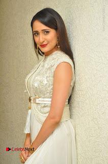 Actress Pragya Jaiswal Stills in Beautiful White Dress at turodu Audio Launch  0021.JPG