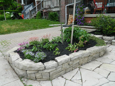 by Paul Jung Gardening Services--a Toronto Gardening Company new front garden perennial bed in Wychwood after