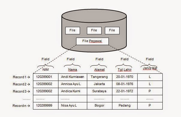 Pengertian dari bit, byte, field, record, file dan database