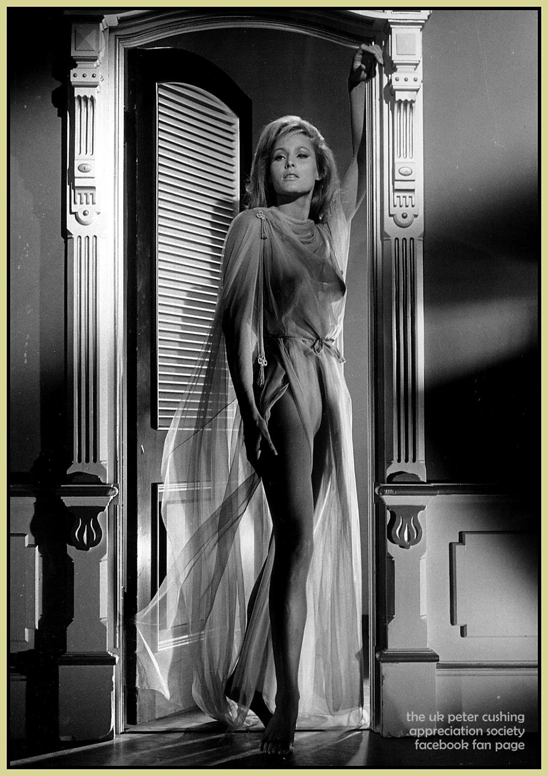 For that She ursula andress film necessary