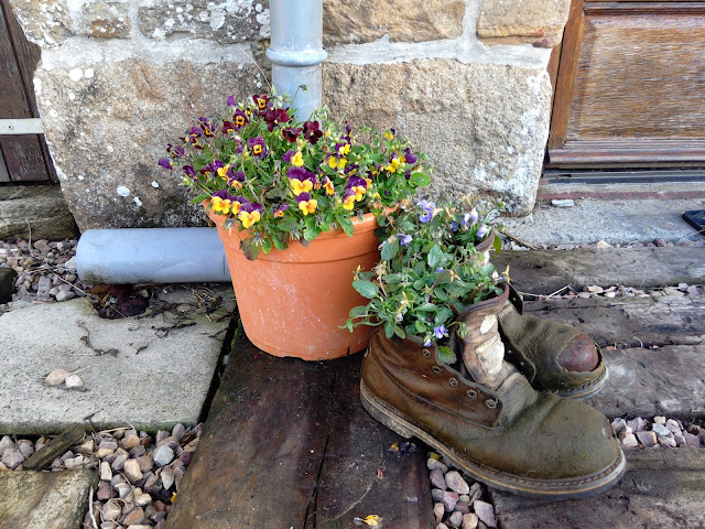 Boots upcycled to plant pots