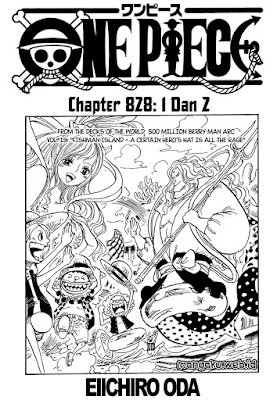 Cover one piece 828