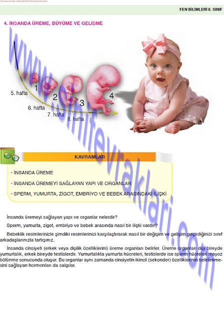 8. Sınıf Fen Bilimleri Ders Kitabı Cevapları Öğün Yayınları Sayfa 29