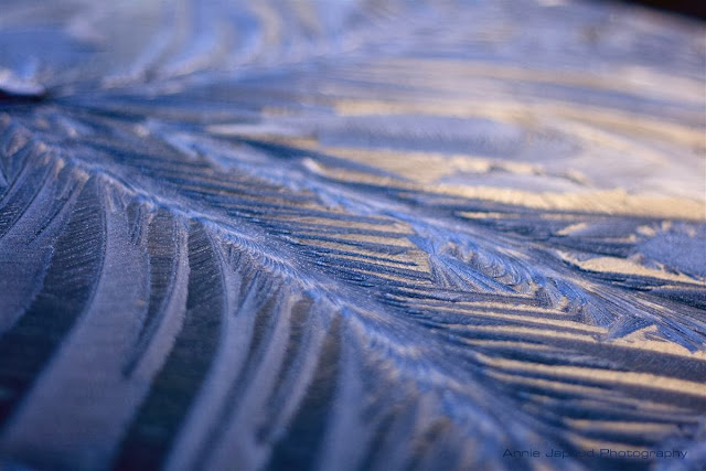 Blue ice photography by Annie Japaud, frozen, ice, cold, photography, macro, blue,