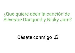 Significado de la canción Cásate Conmigo Silvestre Dangond Nicky Jam.