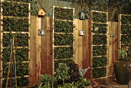 inspirasi pagar minimalis dengan tanaman