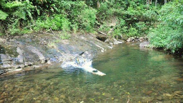 Una cascada de 70 metros y piletas naturales en medio de for Piletas naturales argentina