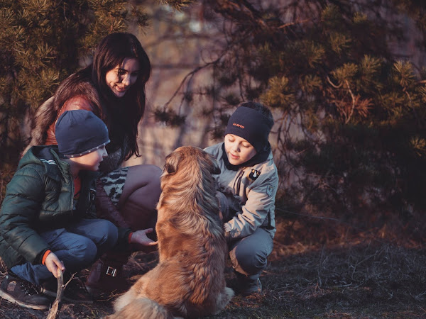 Fun Ways To Bond With The Family