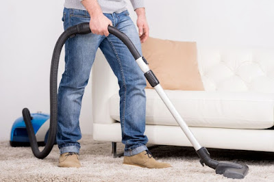 how to get rid of fleas in carpet fast