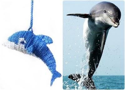 Delfín Amigurumi Patrón y Texto