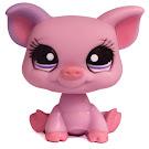 Littlest Pet Shop Pet Pairs Pig (#1256) Pet
