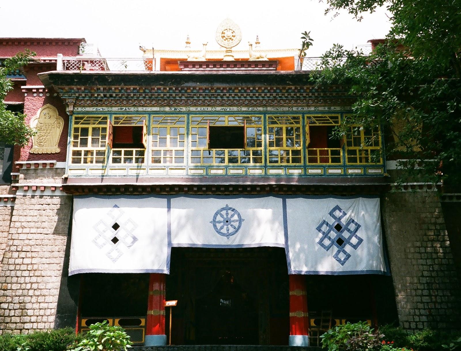 【遊記】印度 - 達蘭薩拉 羅布林卡宮 / 西藏兒童村TCV(Dharamsala) - Joanne wang
