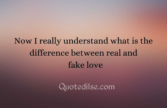 quotes about love being fake