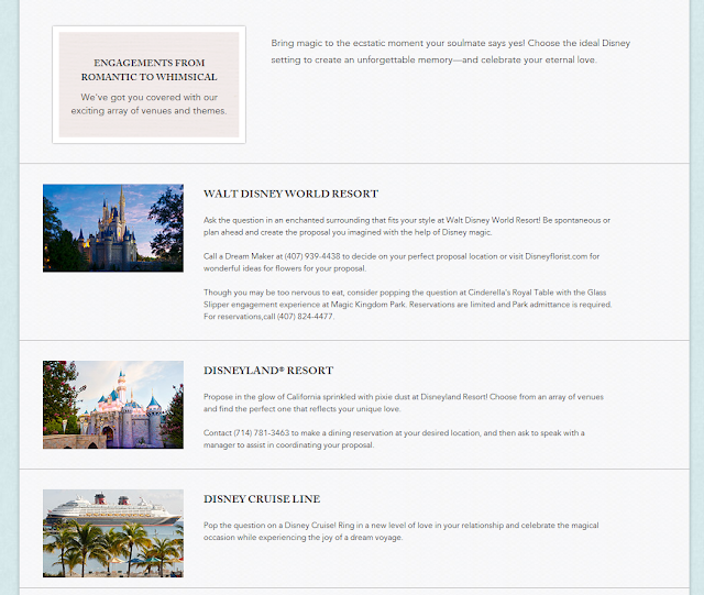 Budget Fairy Tale: A Guide to Disney's Fairy Tale Wedding's New and Improved Website