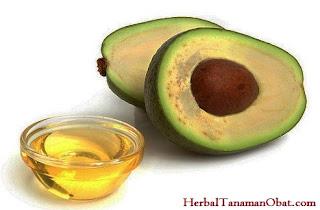 minyak alpukat, minyak alpukat untuk memutihkan kulit, khasiat minyak alpukat, manfaat minyak alpukat, manfaat minyak alpukat untuk kulit, cara memutihkan kulit badan dengan cepat menggunakan minyak buah alpukat, minyak alpukat untuk perawatan rambut