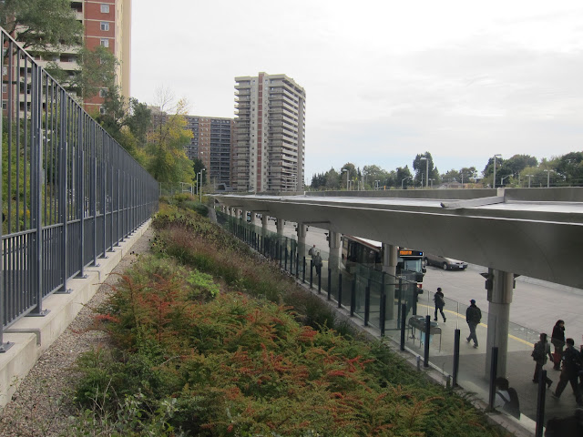 Sloped landscaping behind the bus platform at Victoria Park