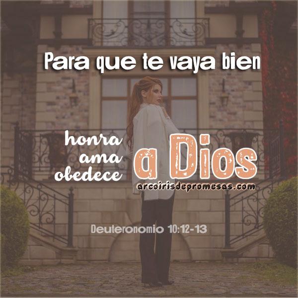 pide con confianza reflexiones cristianas con imágenes arcoiris de promesas