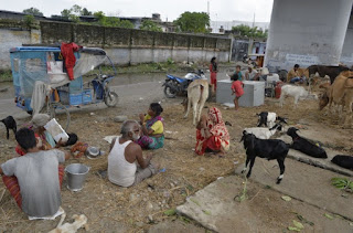water-level-down-bihar-flood