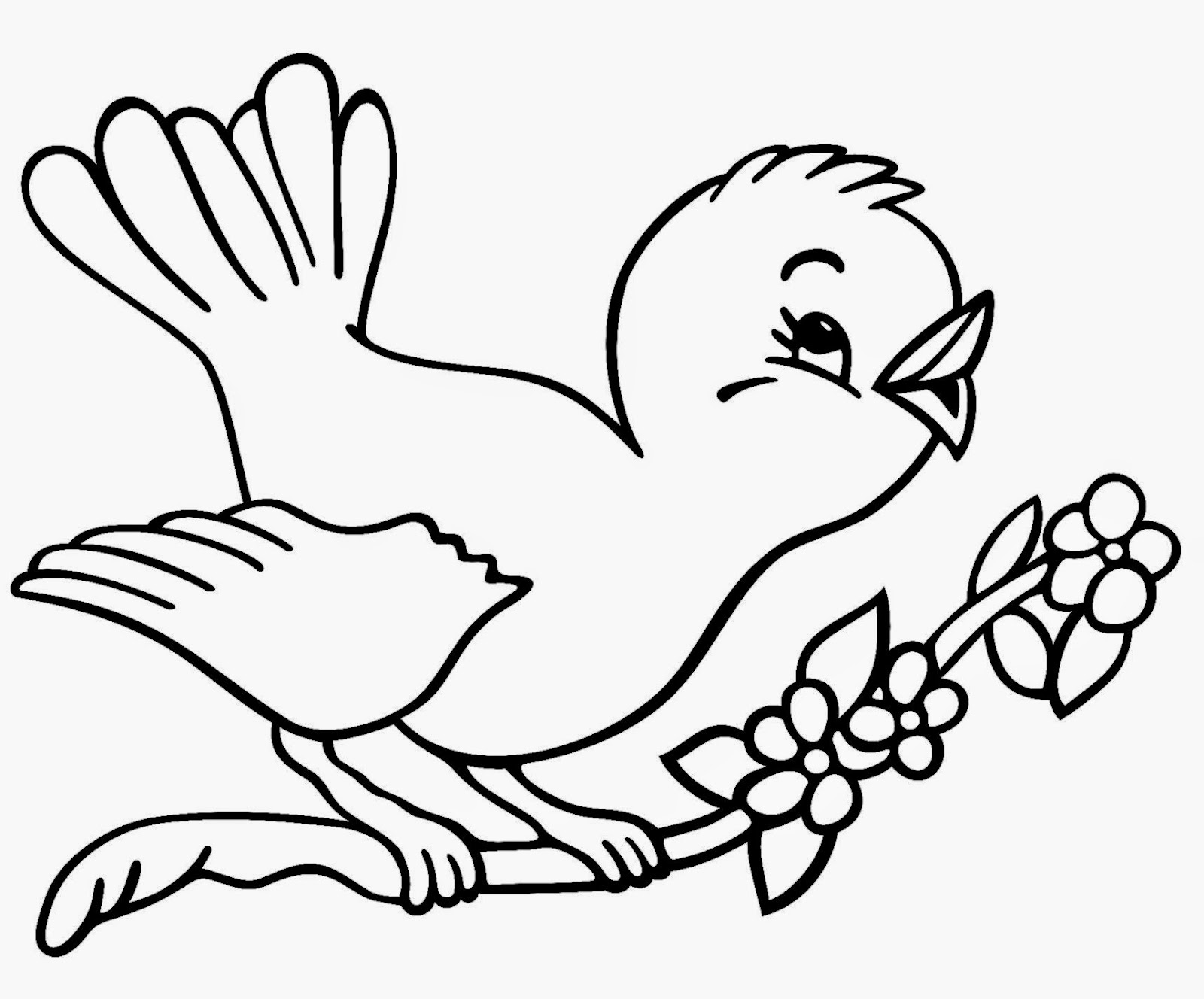 bluebird coloring page printable bluebird picture bluebird