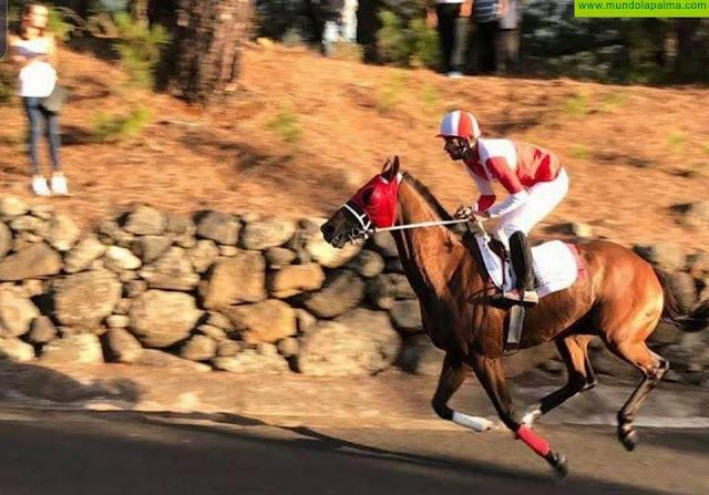 Sodepal arranca este sábado La Palma Ecuestre con 14 carreras de caballos en El Paso