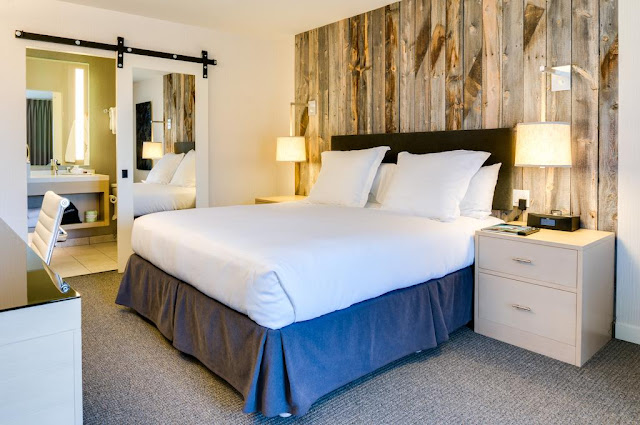 Hotel Paradox Autograph Collection is a modern alternative to the Traditional Santa Cruz Hotel. Look beyond your first instict of Santa Cruz and you will find things hidden in plain sight: Rugged mountains, majestic redwoods, vibrant communities, and much more.