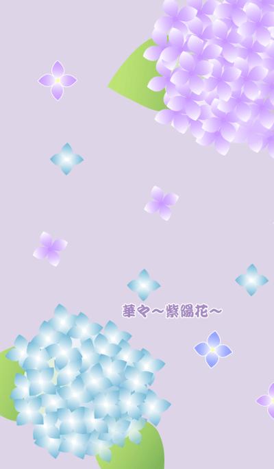 Flowers -hydrangea-