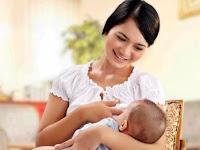Jelaskan Pentingnya dan Manfaatnya ASI Ekslusif Bagi Bayi