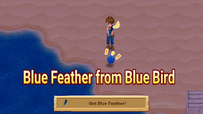 How to Get Blue Feather in Harvest Moon: Light of Hope