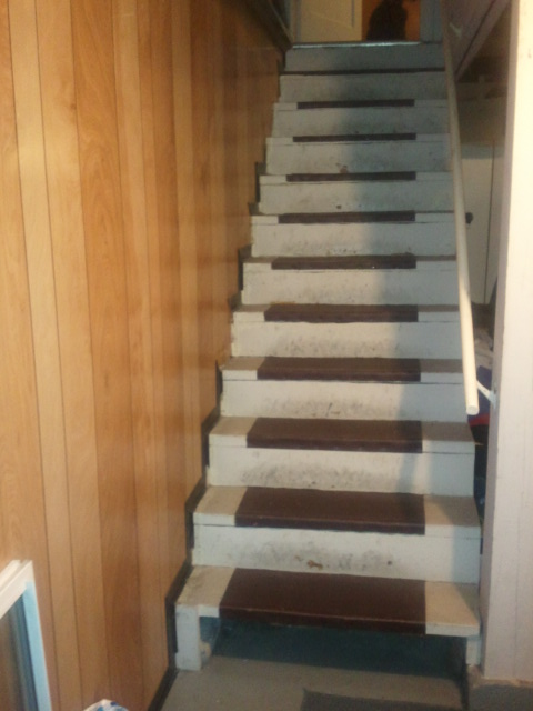 Basement Stair Landing Decorating: Finding My Healthy: Basement Stairs Ideas