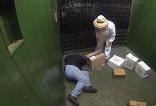 Φάρσα με μέλισσες σε ασανσέρ...video