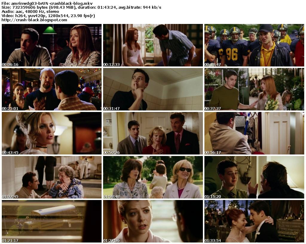 American Pie 6 Presents Beta House 2007 torrent american pie 6 beta house | download american pie 6