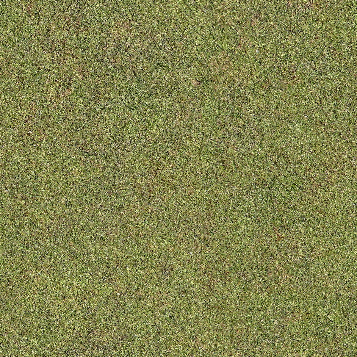 Seamless Golf Green Grass Texture + (Maps)