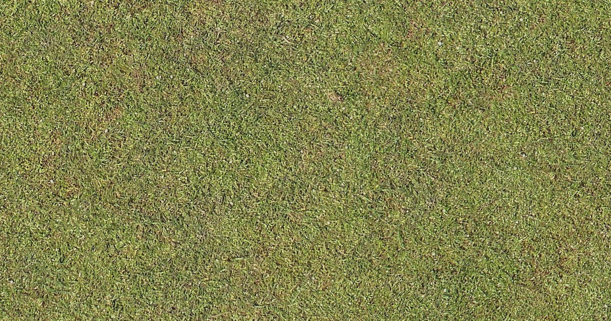 Seamless Golf Green Grass Texture Maps Texturise