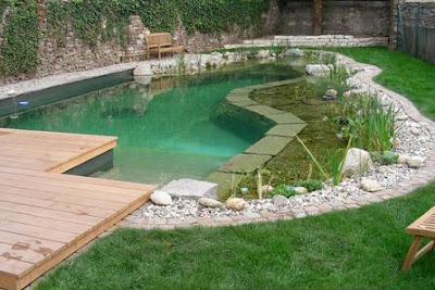 Natural swimming pool design for small yard