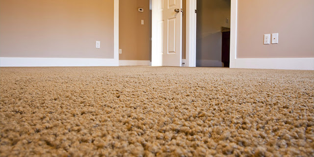 A close-up view of clean, beautiful carpet