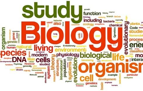 Biologi SMP Kelas 8