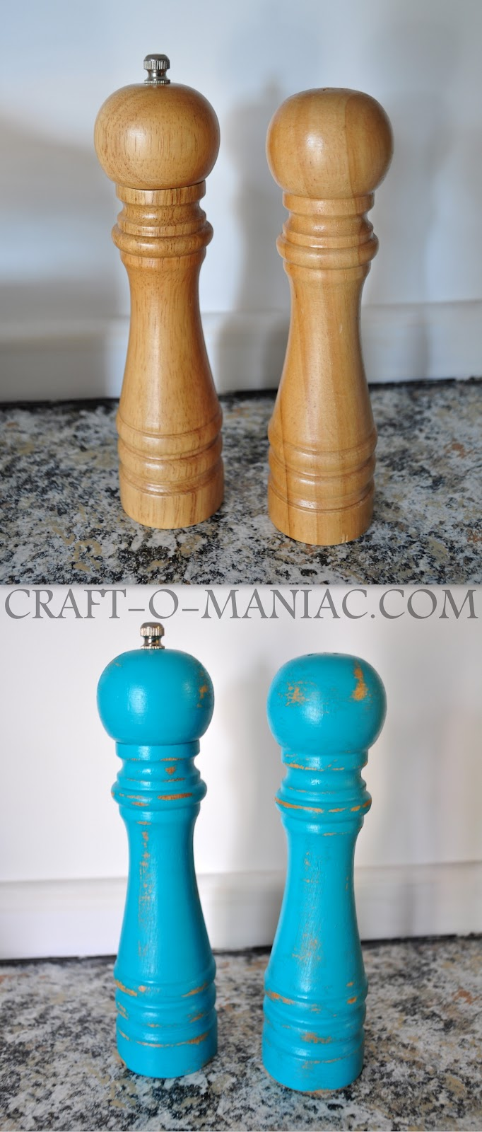 Diy Painted Salt Amp Pepper Shakers Craft O Maniac
