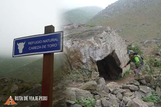 REFUGIO NATURAL CABEZA DE TORO RUTADEVIAJEPERU.COM