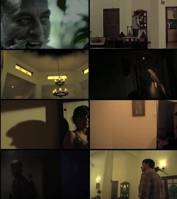 Chudail Story 2016 Movie Download Hindi HDRip 300MB