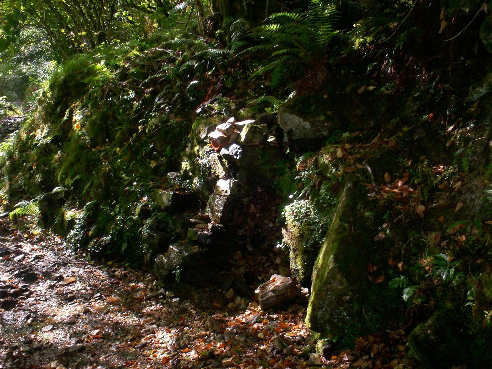 Fuente en el Desfiladero de los Arrudos en el Parque Natural de Redes.