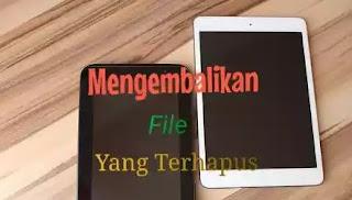 Cara Mengembalikan File Yang Terhapus Di Hp Android tanpa PC