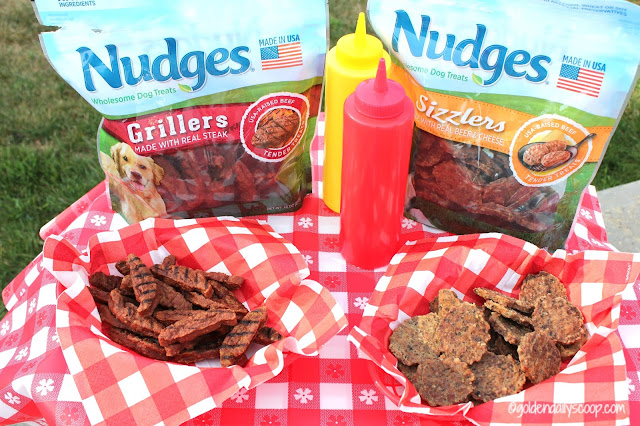 Nudges Grillers and Sizzlers wholesome dog treats review